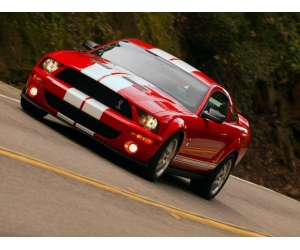 ����������  Ford Mustang Shelby GT500