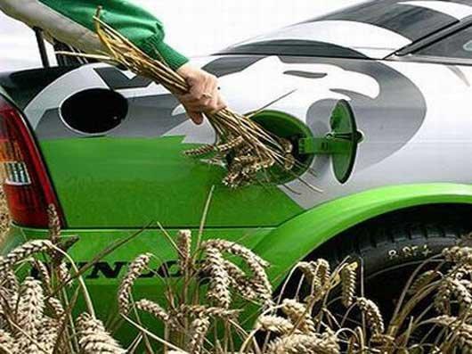 Биотопливо своими руками для дизеля