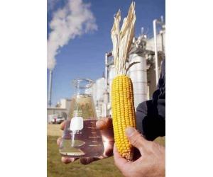 Альтернативное биологическое топливо для автомобилей