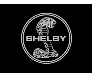 ������� ������������� ����� Shelby